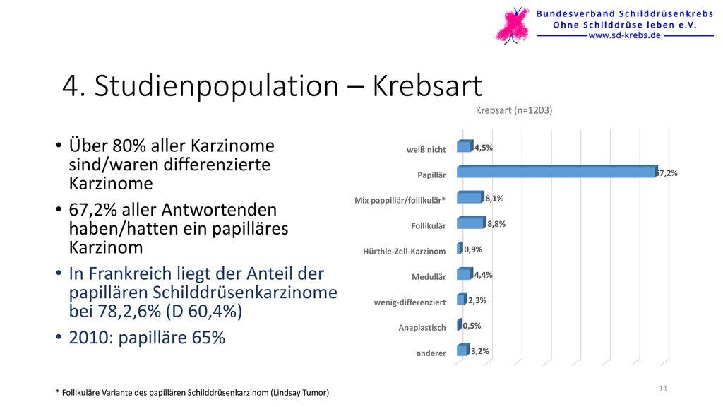 4. Studienpopulation – Krebsart