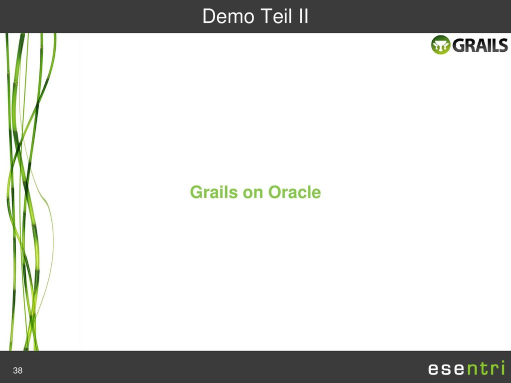 Demo Teil II Grails on Oracle