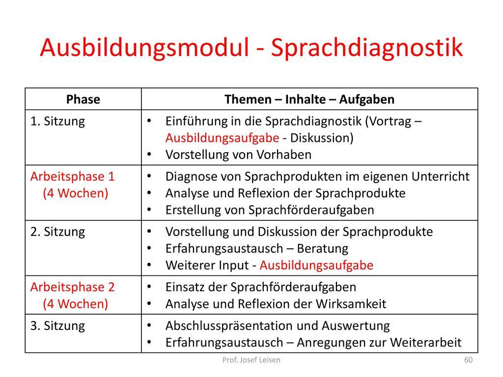 Ausbildungsmodul - Sprachdiagnostik