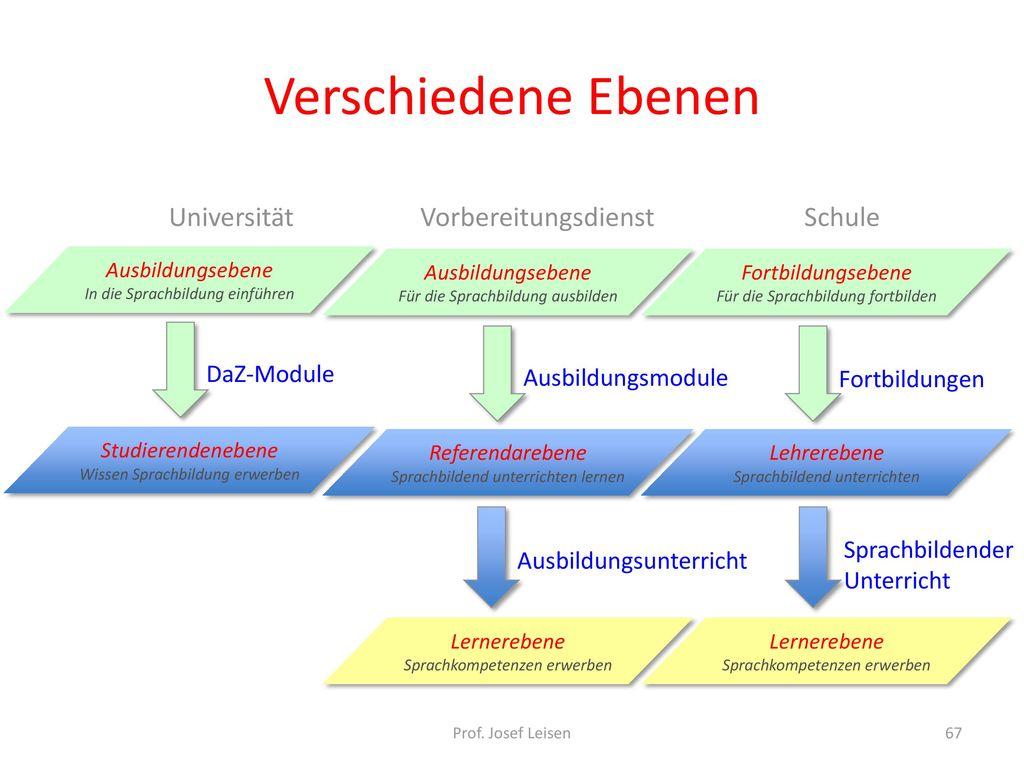 Verschiedene Ebenen Universität Vorbereitungsdienst Schule DaZ-Module