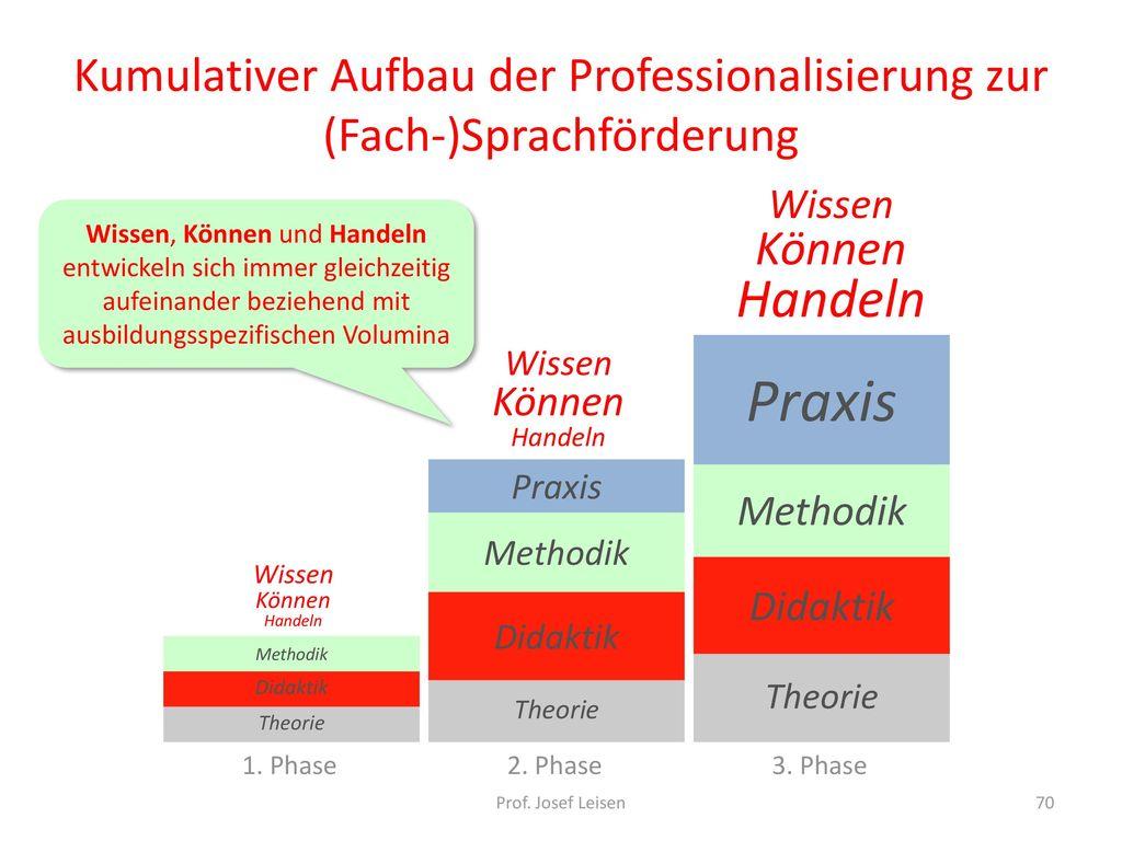 Kumulativer Aufbau der Professionalisierung zur (Fach-)Sprachförderung