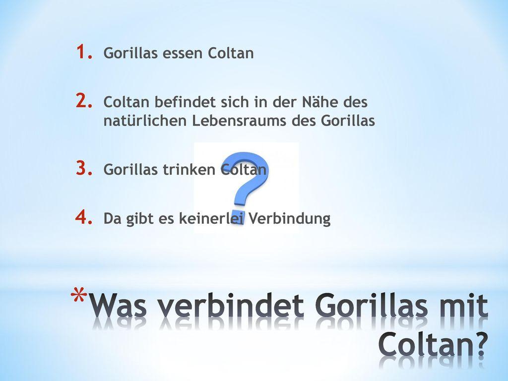 Was verbindet Gorillas mit Coltan