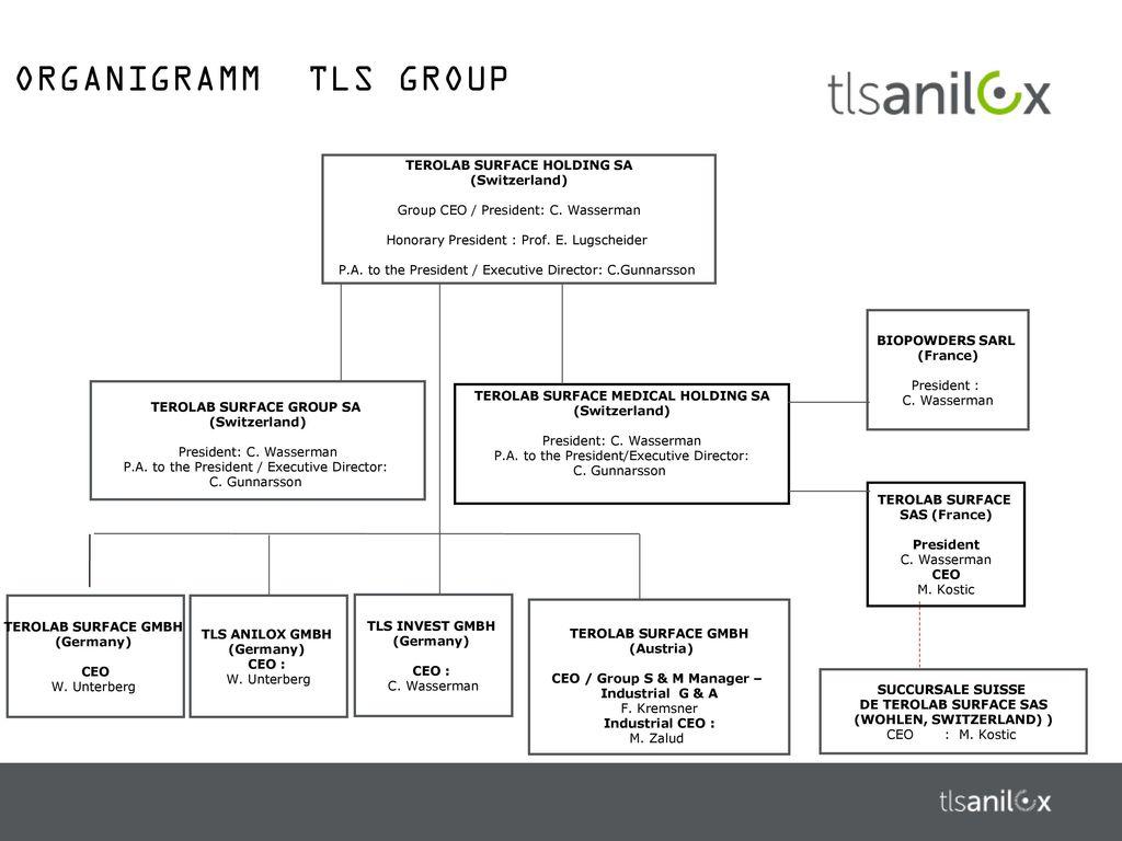 ORGANIGRAMM TLS GROUP TEROLAB SURFACE HOLDING SA (Switzerland)