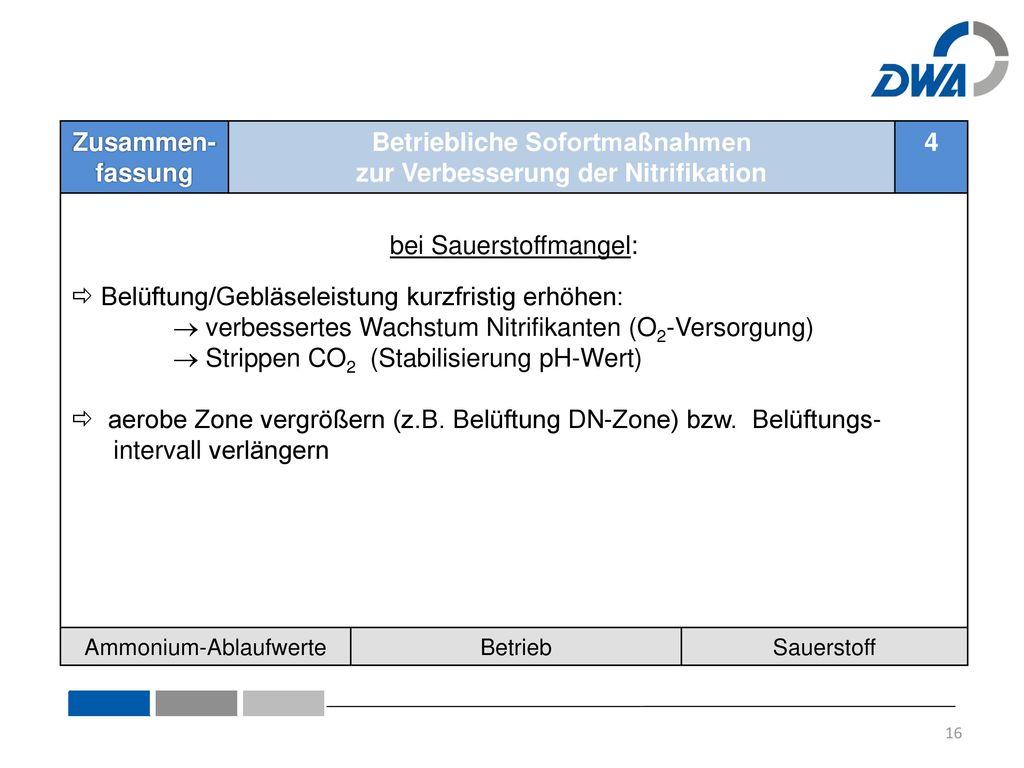 4.1 Allgemeines: TKN-Fracht-Spitzen 4