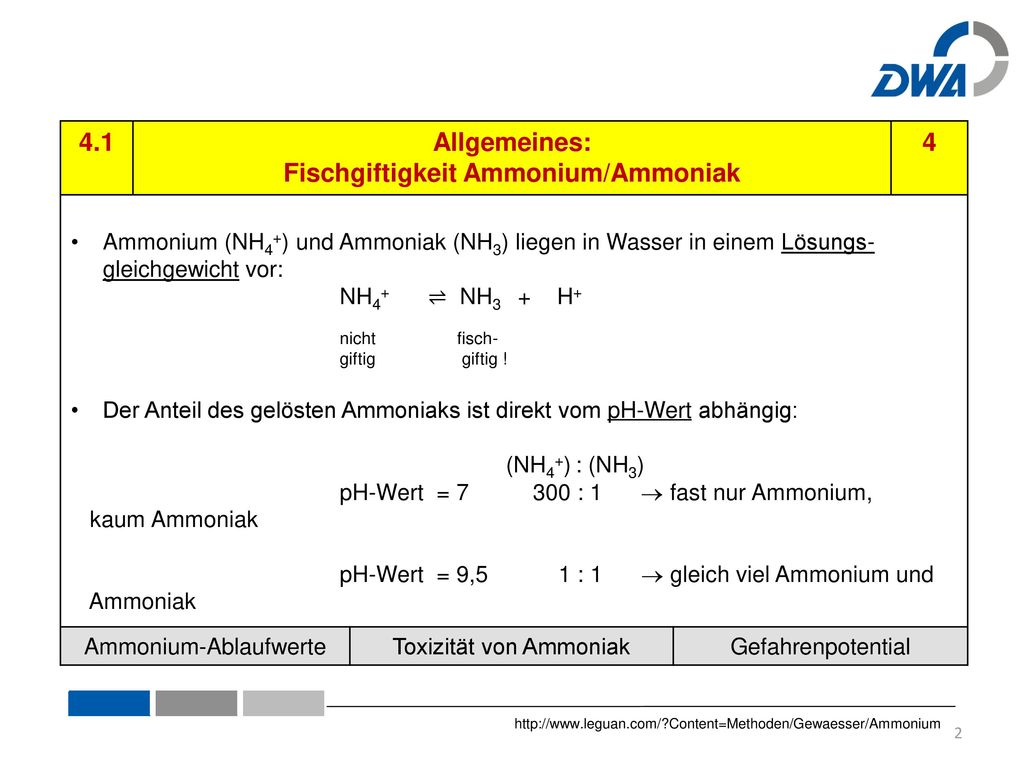 Fischgiftigkeit Ammonium/Ammoniak