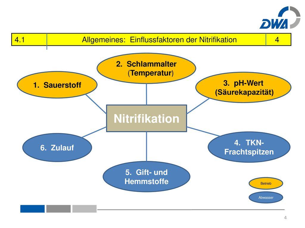 Nitrifikation 4.1 Allgemeines: Einflussfaktoren der Nitrifikation 4