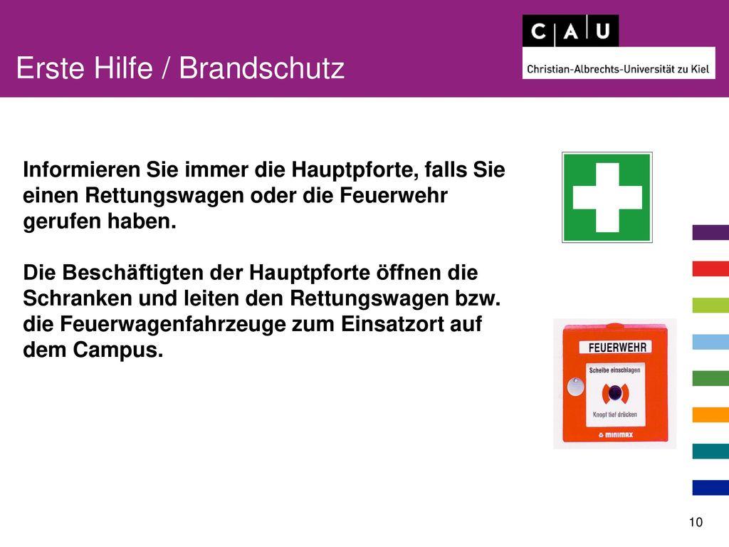 Erste Hilfe / Brandschutz