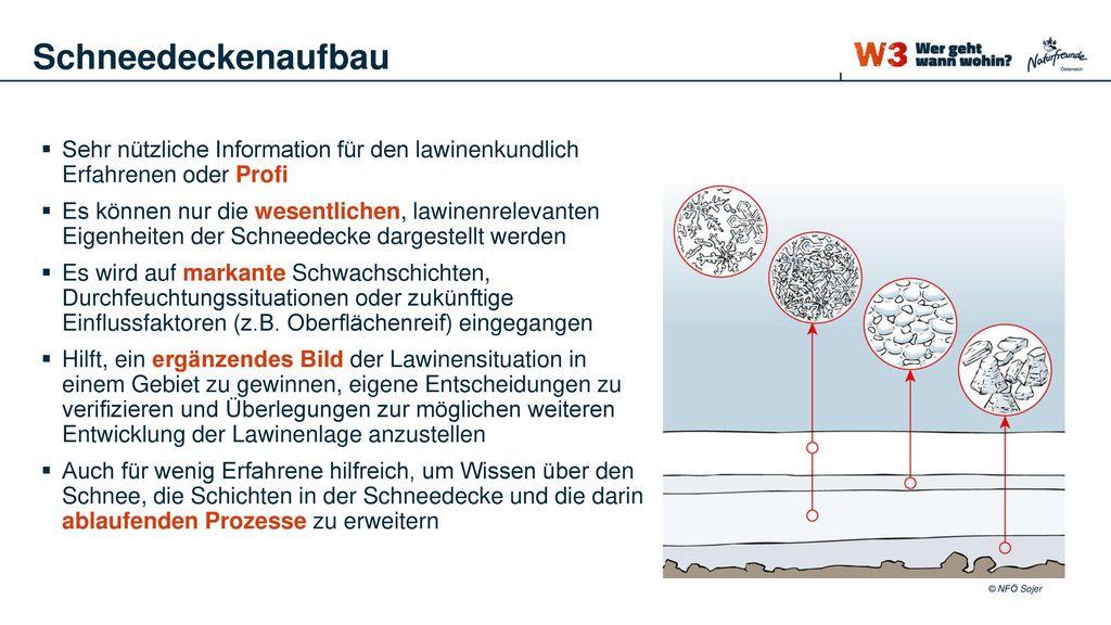 Schneedeckenaufbau Sehr nützliche Information für den lawinenkundlich Erfahrenen oder Profi.