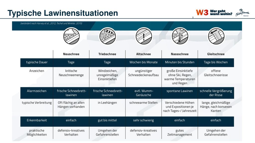 Typische Lawinensituationen