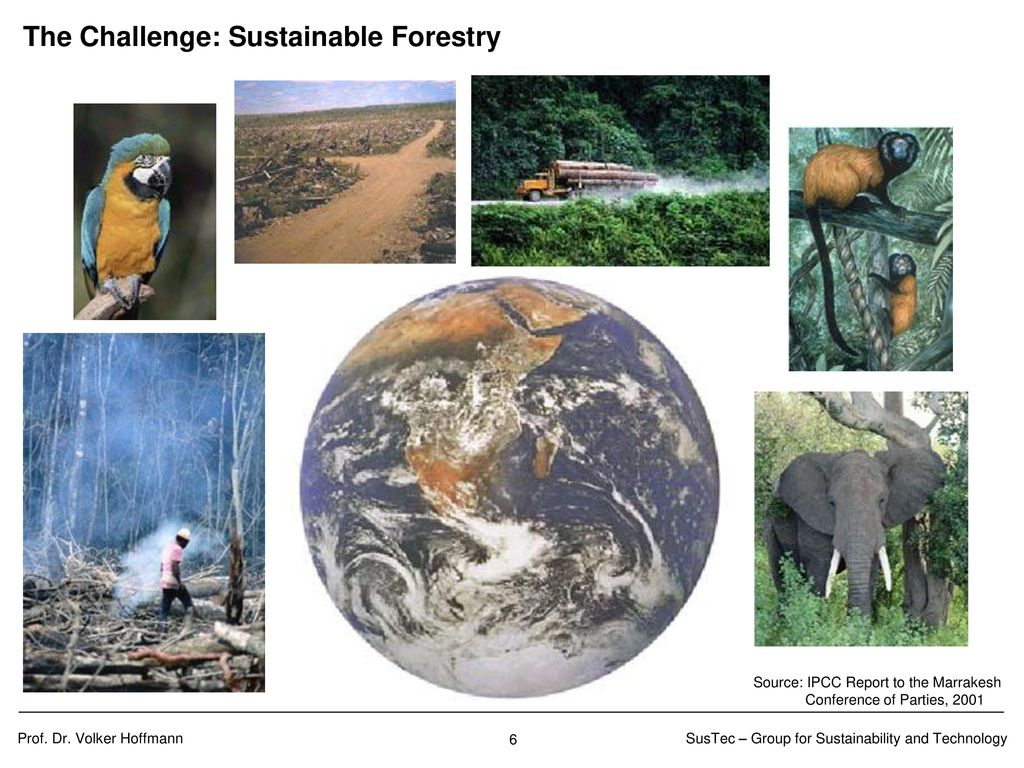 The Challenge: Conservation of biodiversity
