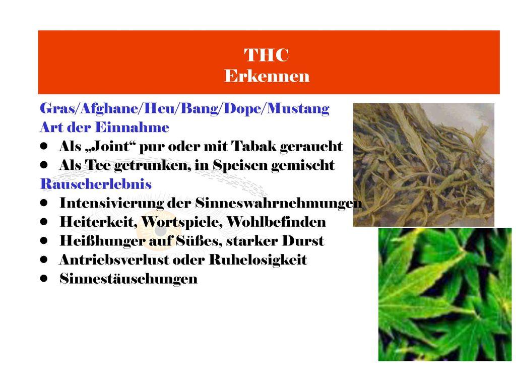 THC Erkennen Gras/Afghane/Heu/Bang/Dope/Mustang Art der Einnahme