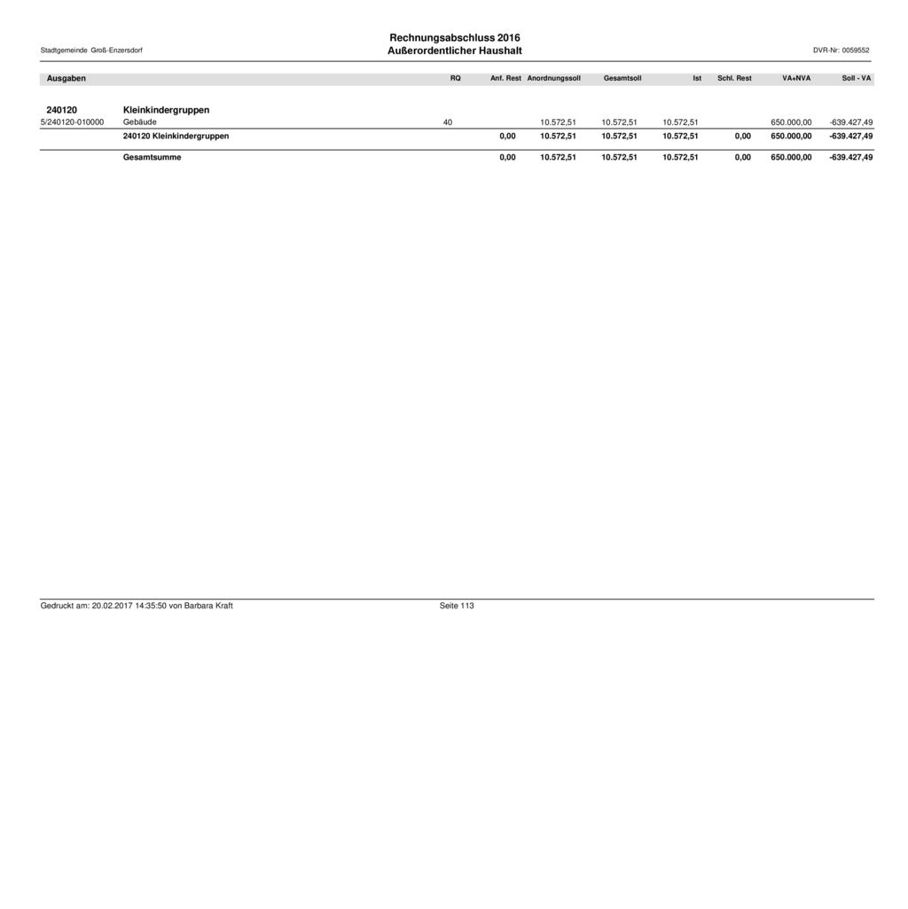 Außerordentlicher Haushalt