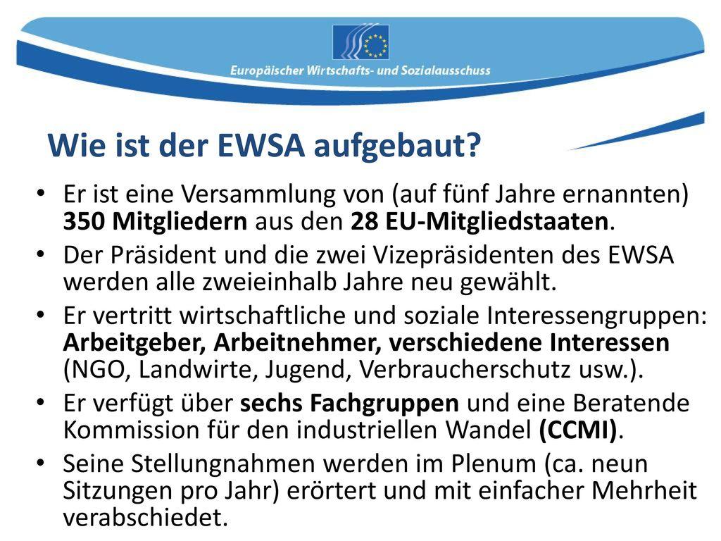 Wie ist der EWSA aufgebaut
