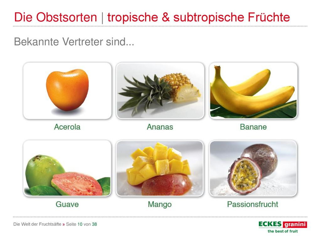 Die Obstsorten | tropische & subtropische Früchte