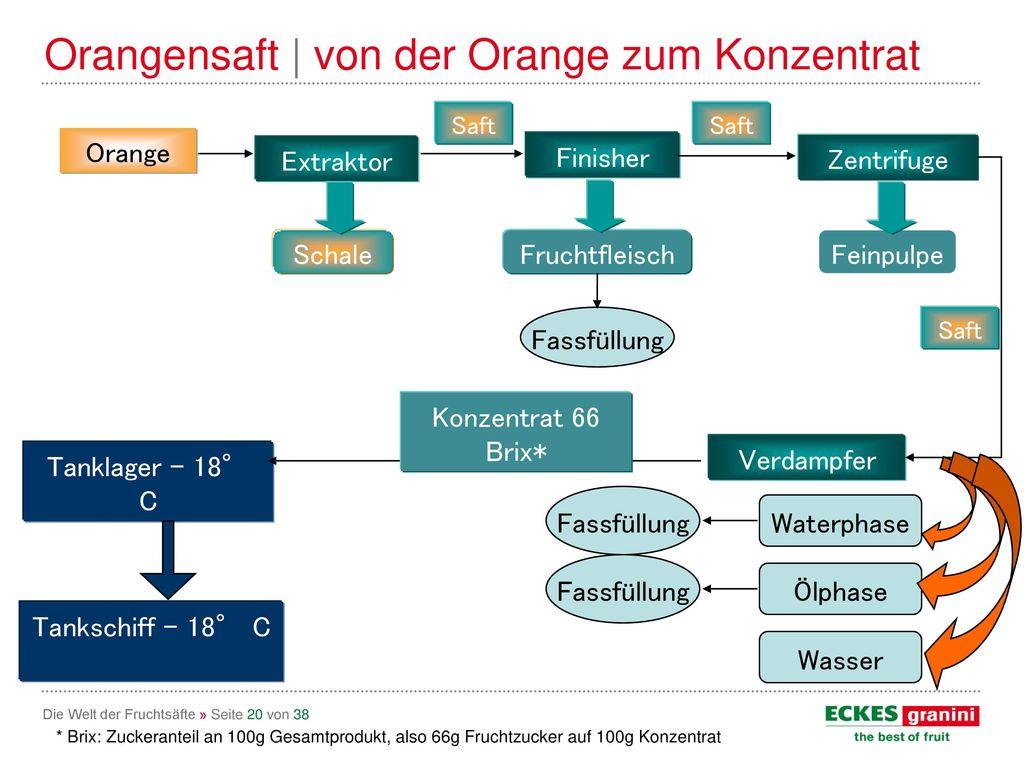 Orangensaft | von der Orange zum Konzentrat