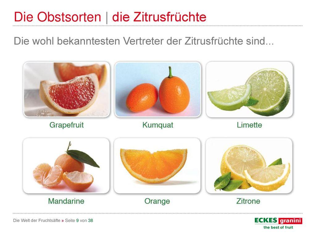 Die Obstsorten | die Zitrusfrüchte