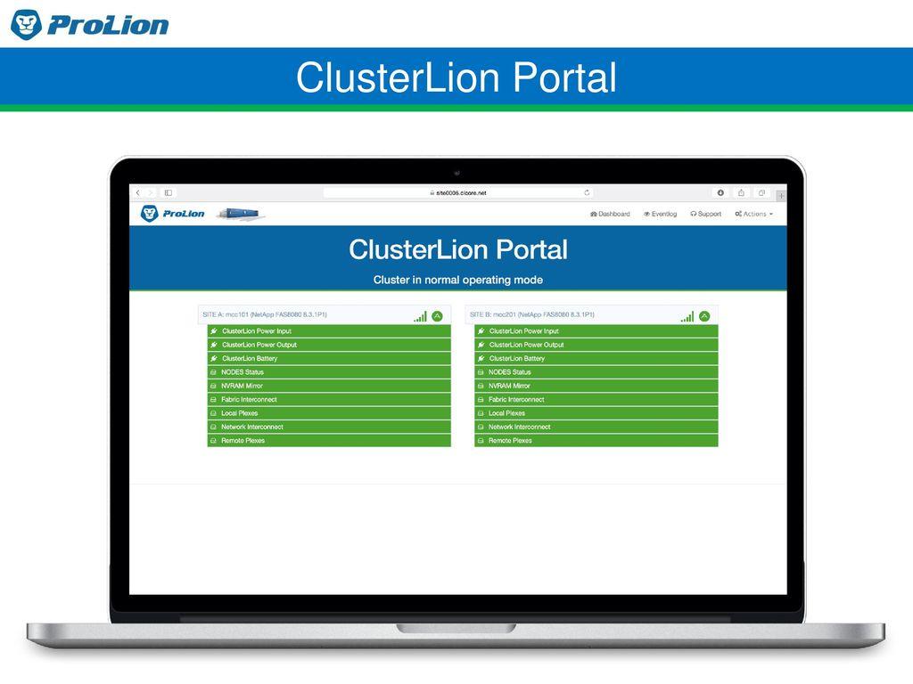 ClusterLion Portal