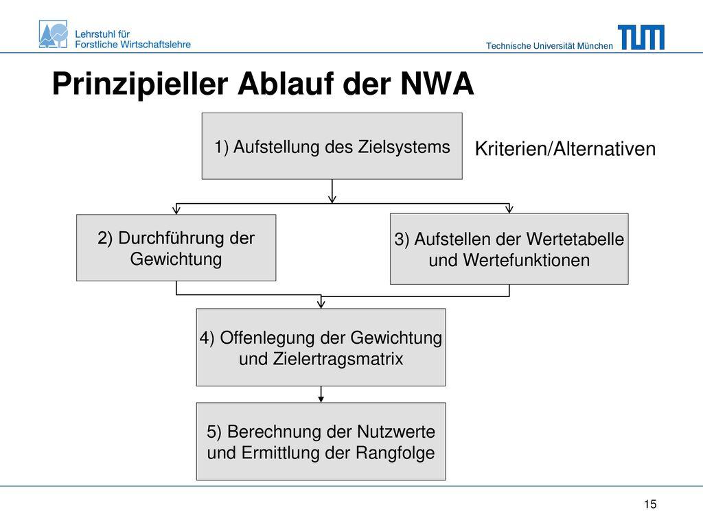 Prinzipieller Ablauf der NWA