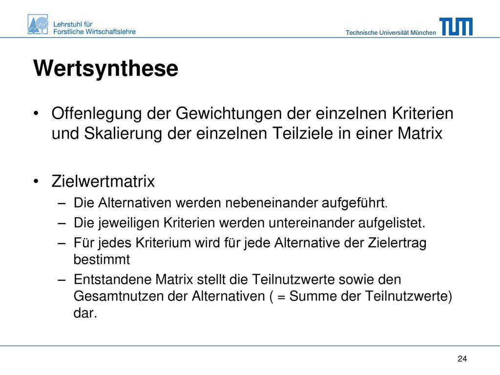Wertsynthese Offenlegung der Gewichtungen der einzelnen Kriterien und Skalierung der einzelnen Teilziele in einer Matrix.