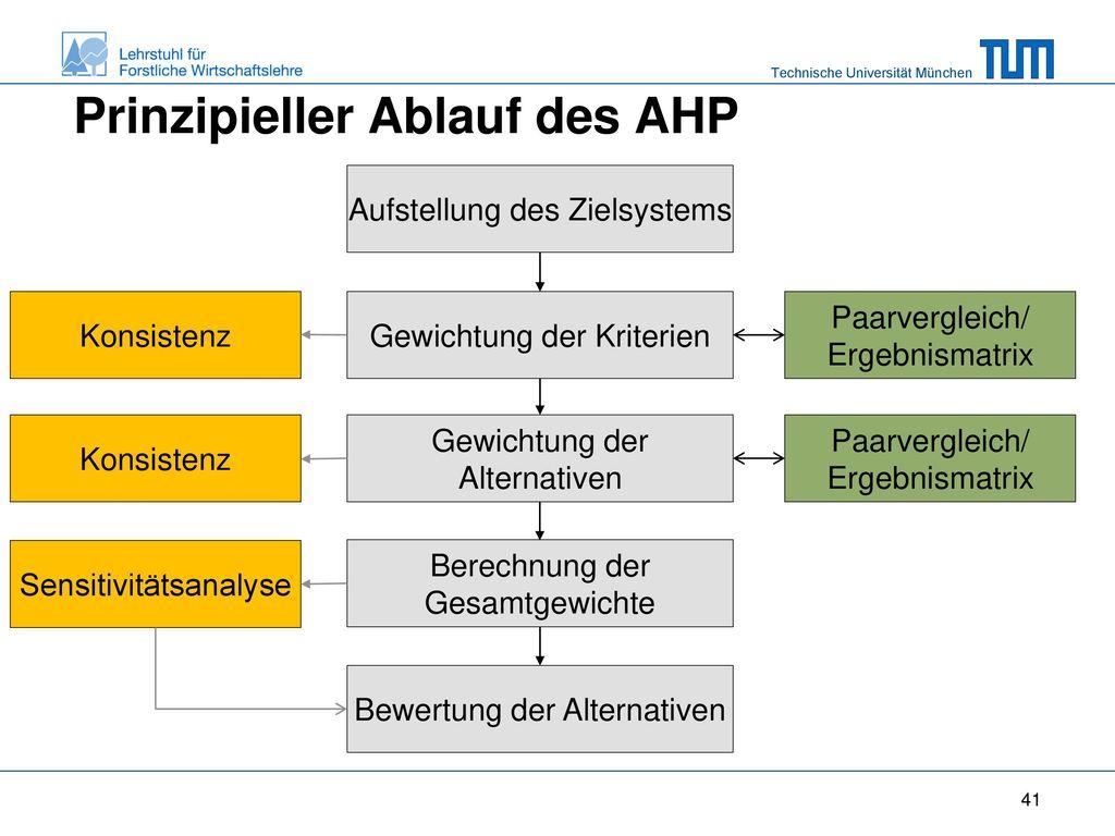 Prinzipieller Ablauf des AHP