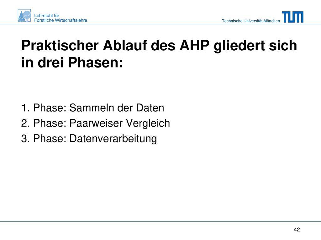 Praktischer Ablauf des AHP gliedert sich in drei Phasen: