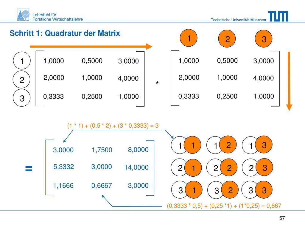Schritt 1: Quadratur der Matrix