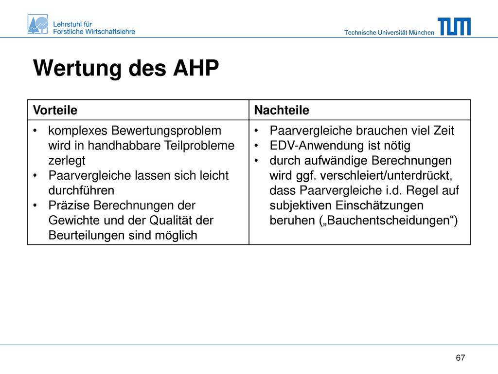 Wertung des AHP Vorteile Nachteile