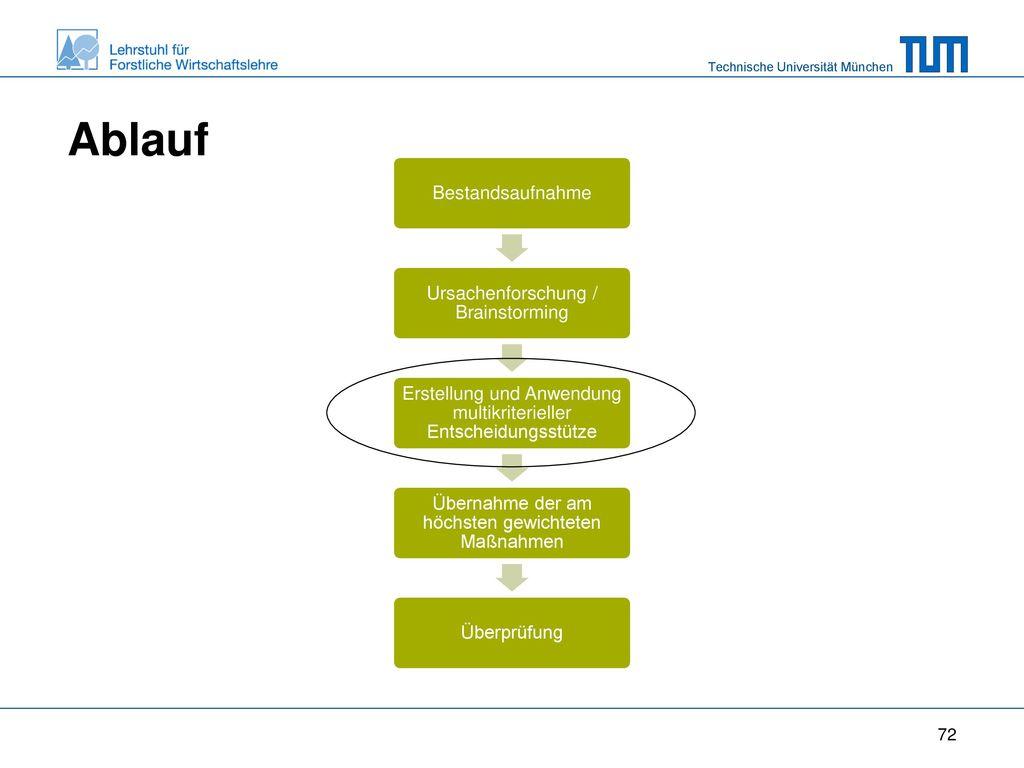Ablauf Bestandsaufnahme. Ursachenforschung / Brainstorming. Erstellung und Anwendung multikriterieller Entscheidungsstütze.