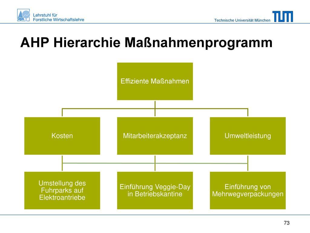AHP Hierarchie Maßnahmenprogramm