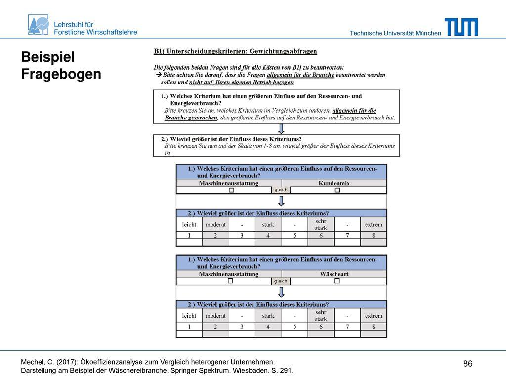 Beispiel Fragebogen Wie komme ich an die relevanten Daten für die Gewichtung der Kriterien