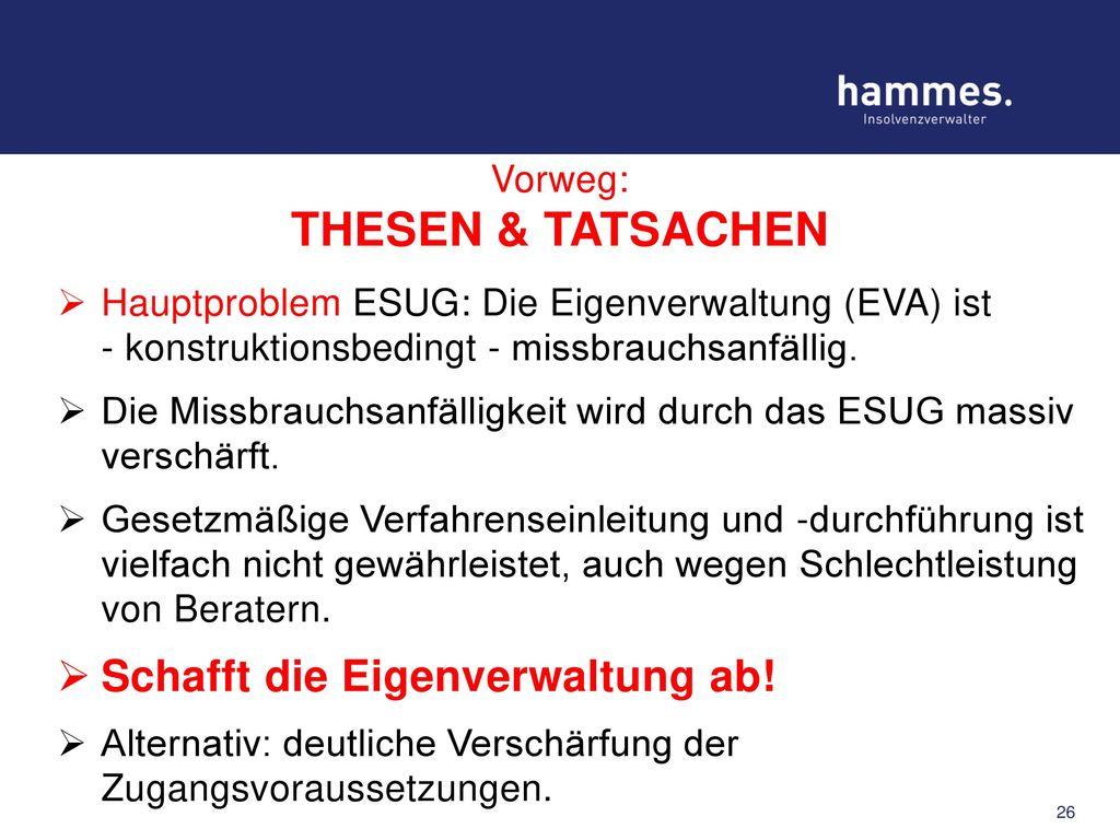 Vorweg: THESEN & TATSACHEN