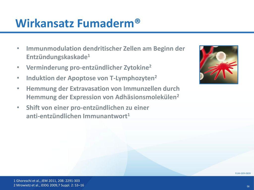 Wirkansatz Fumaderm® Immunmodulation dendritischer Zellen am Beginn der Entzündungskaskade1. Verminderung pro-entzündlicher Zytokine2.