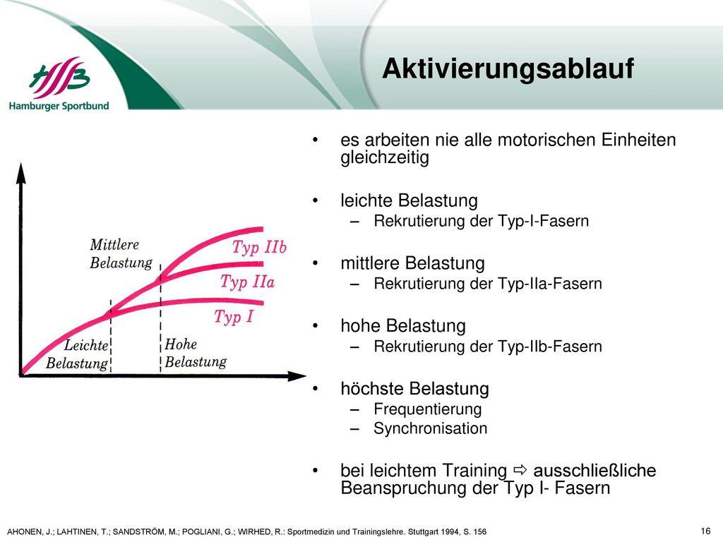Aktivierungsablauf es arbeiten nie alle motorischen Einheiten gleichzeitig. leichte Belastung. Rekrutierung der Typ-I-Fasern.