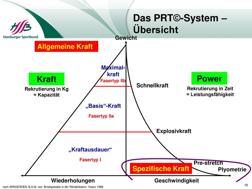 Das PRT©-System – Übersicht