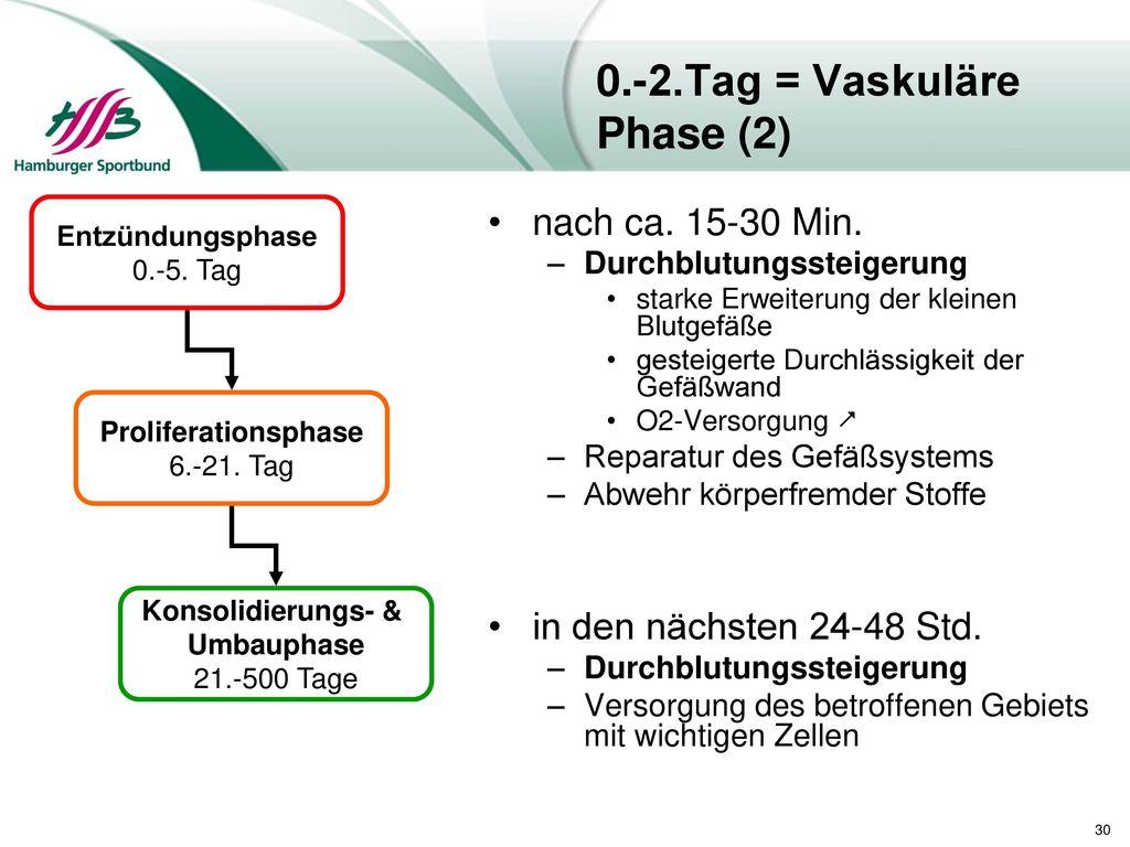 0.-2.Tag = Vaskuläre Phase (2)