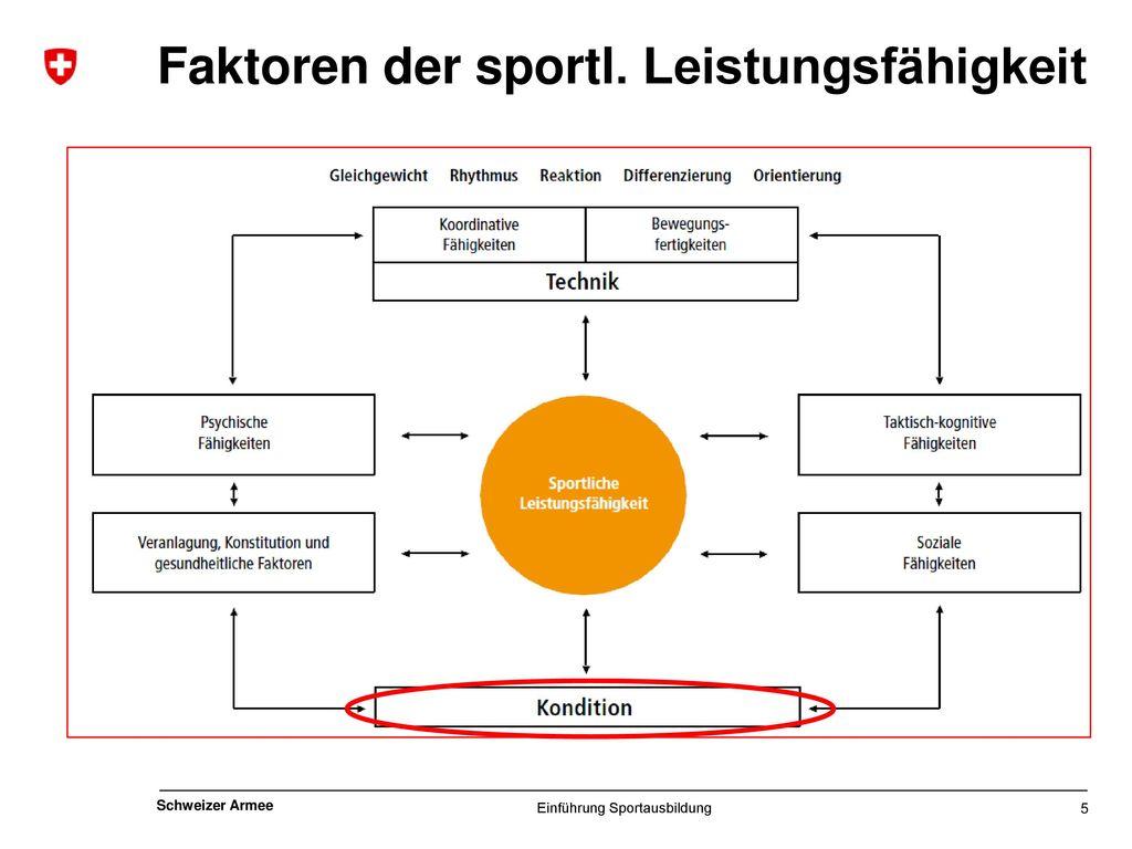 Faktoren der sportl. Leistungsfähigkeit