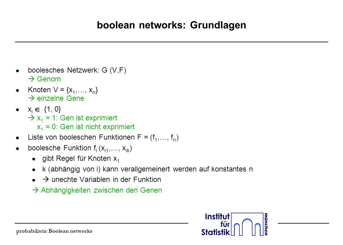boolean networks: Grundlagen