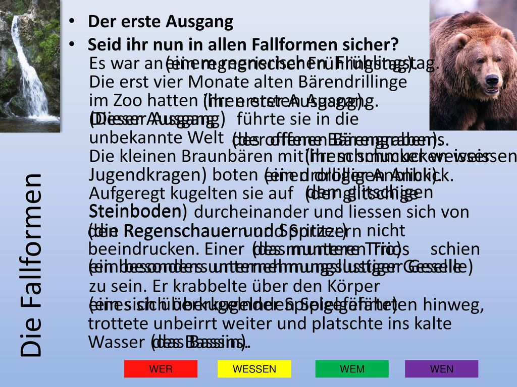 Die Fallformen (ein regnerischer Frühlingstag).