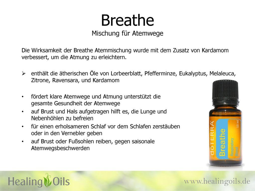 Breathe Mischung für Atemwege