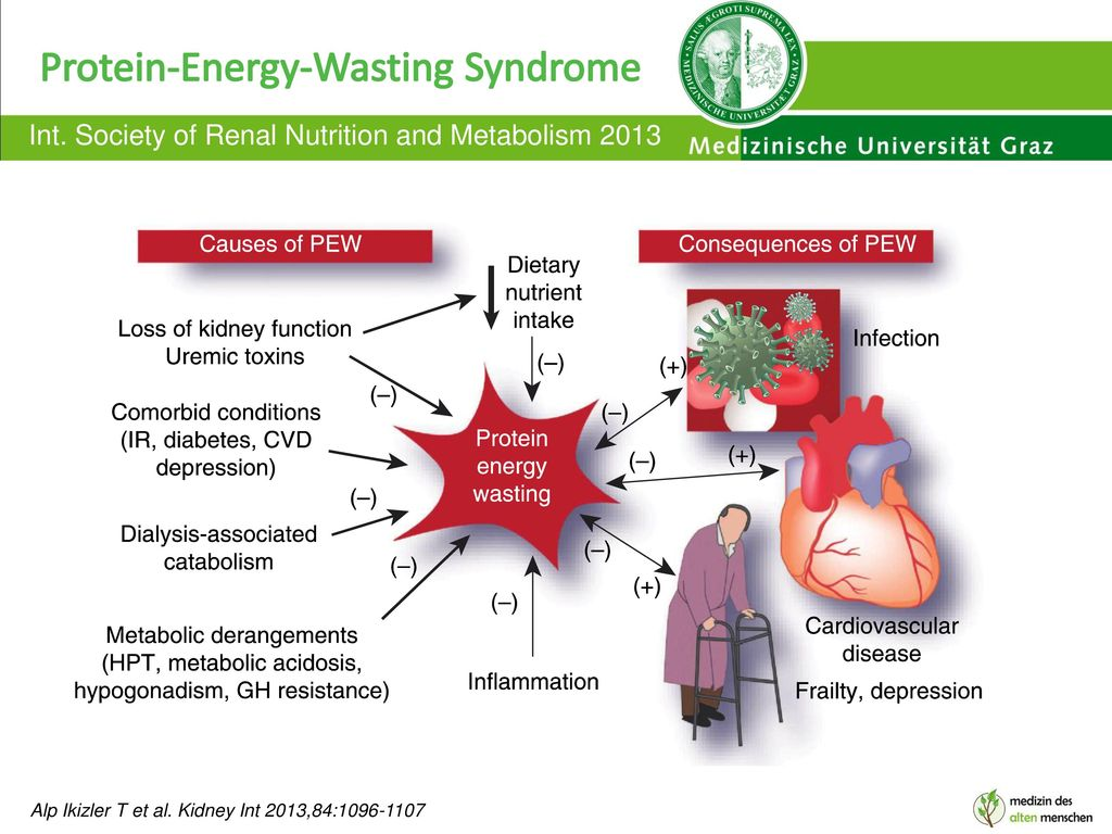 Protein-Energy-Wasting Syndrome