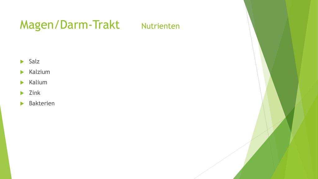 Magen/Darm-Trakt Nutrienten