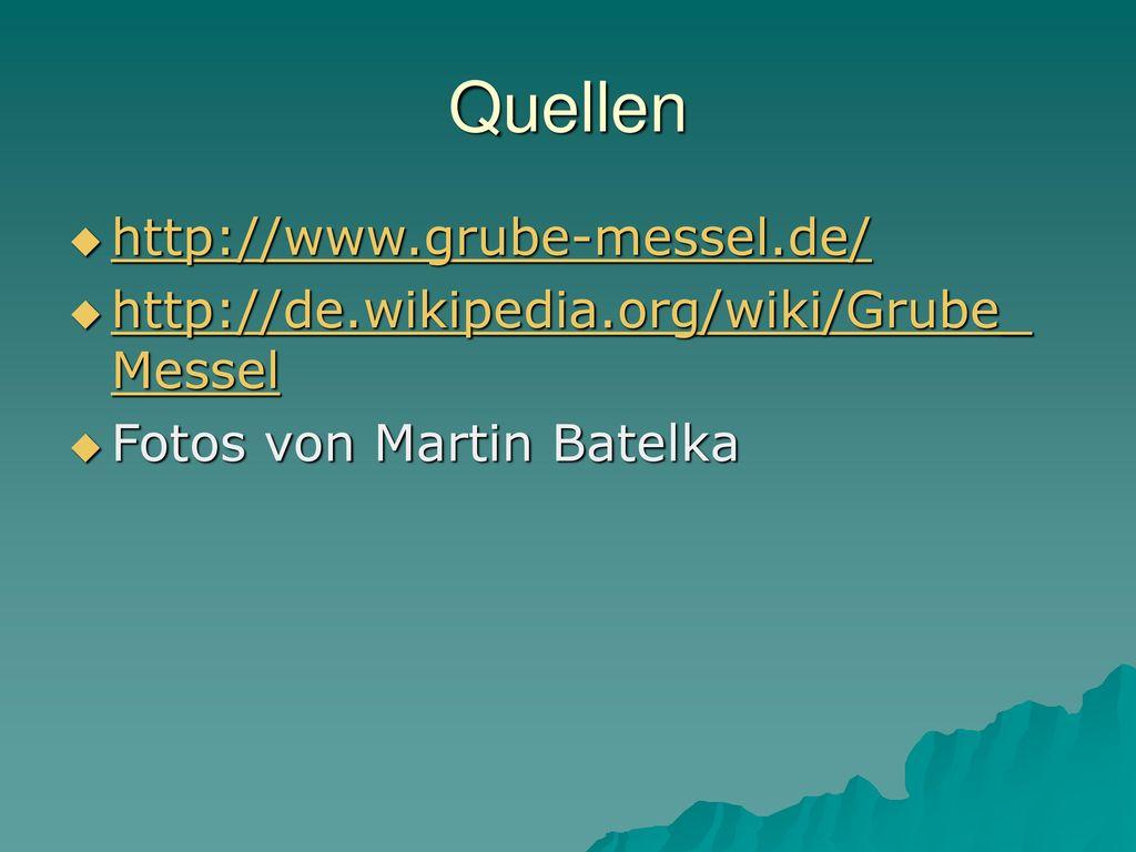 Quellen http://www.grube-messel.de/