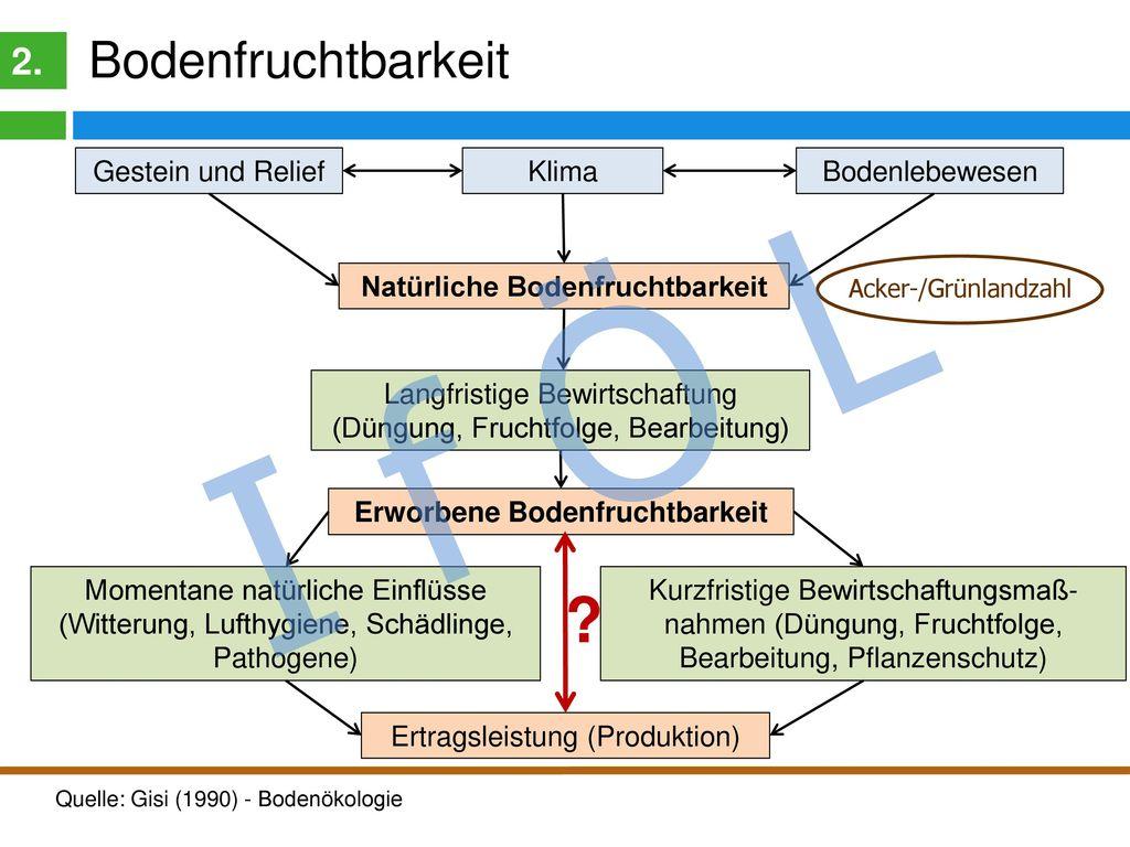 Einflussgrößen der Bodenfruchtbarkeit