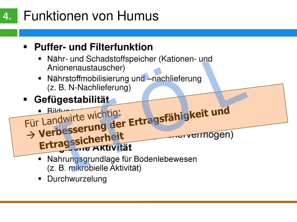 Humuswirkungen 4. Biologische und chemische Wirkungen. Erhöhung der Kationen- und Anionenaustauschkapazität (KAK)