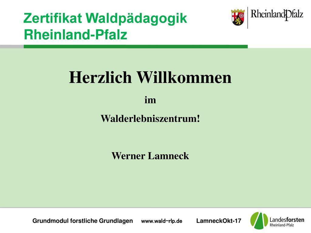 Grundmodul forstliche Grundlagen www.wald-rlp.de LamneckOkt-17