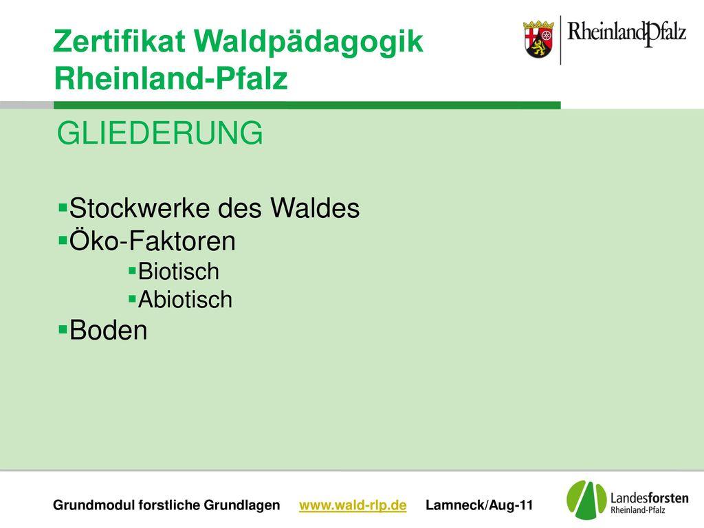 Grundmodul forstliche Grundlagen www.wald-rlp.de Lamneck/Aug-11