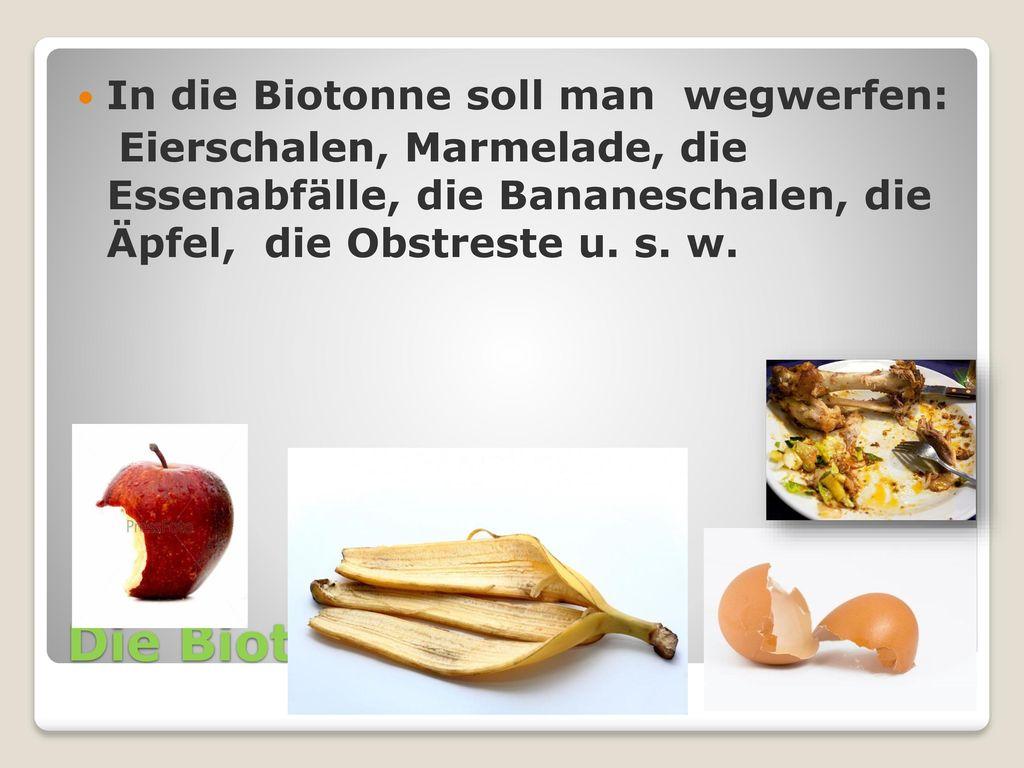 Die Biotonne In die Biotonne soll man wegwerfen: