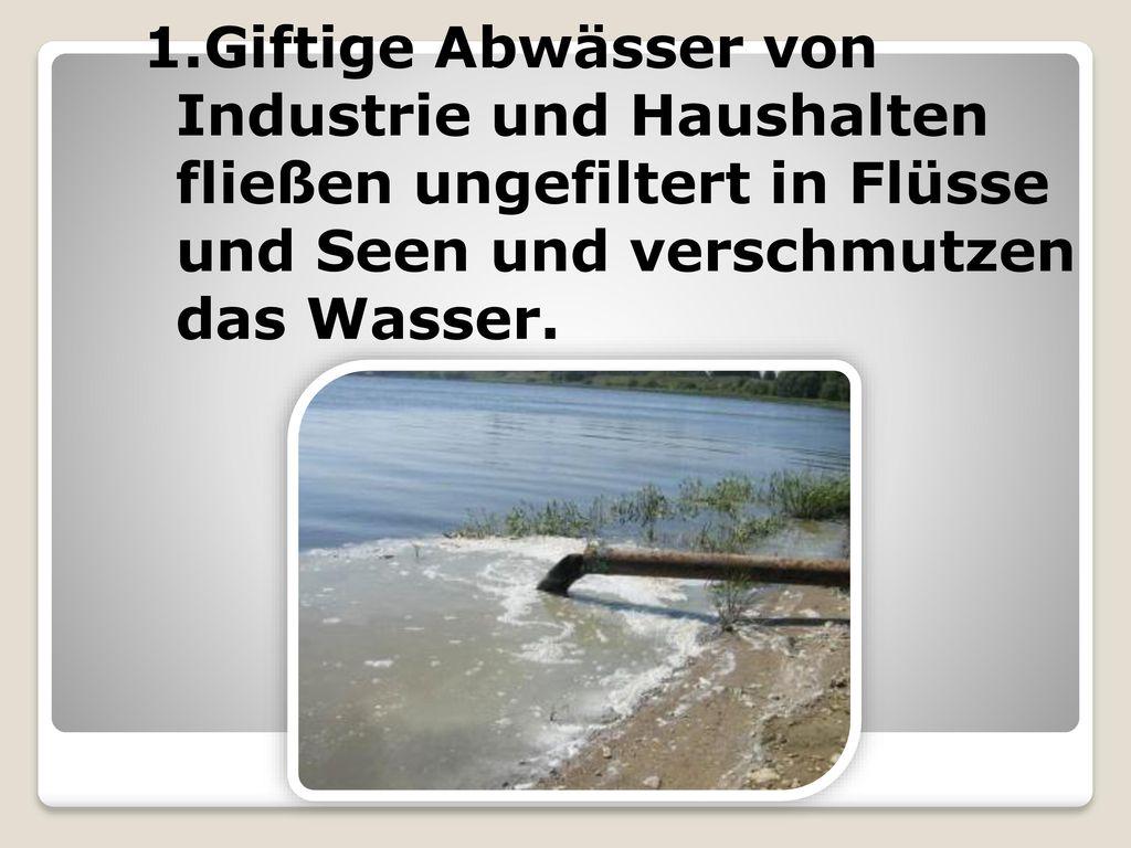 1.Giftige Abwässer von Industrie und Haushalten fließen ungefiltert in Flüsse und Seen und verschmutzen das Wasser.