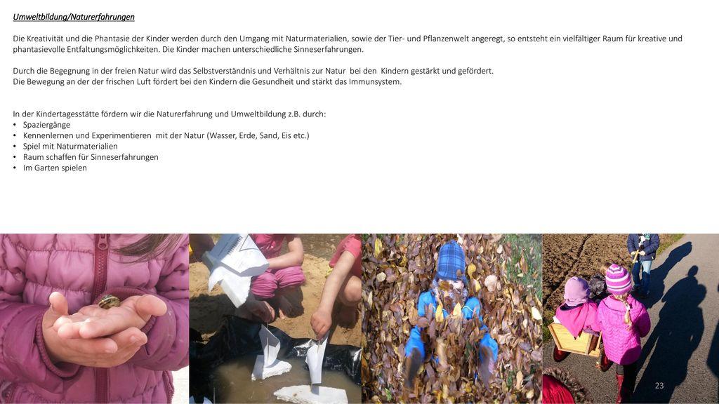 Umweltbildung/Naturerfahrungen