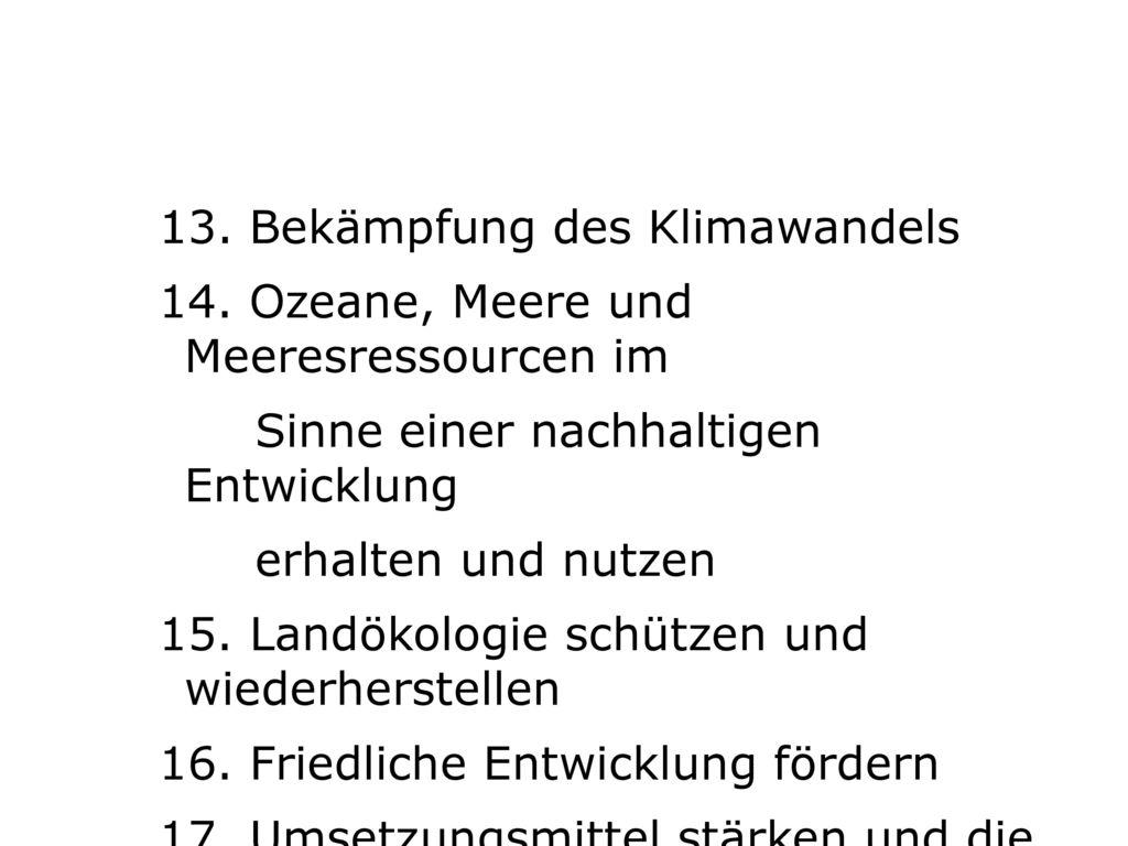 13. Bekämpfung des Klimawandels